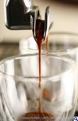 Quality Coffee from Ecuador