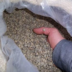 Grønne kaffebønner